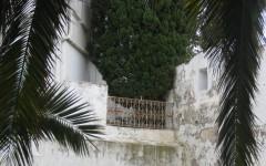 montsouris,tunisie,sidi-drhif