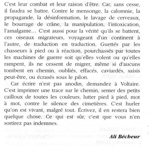 2 Ali Bécheur page 3.jpg